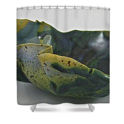 Paper-thin Bowl 09-015 Shower Curtain