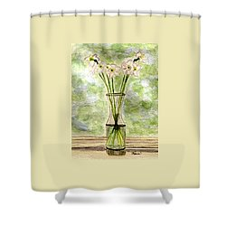 Shower Curtain featuring the painting Paper Whites In Sunlight by Angela Davies