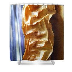 Shower Curtain featuring the photograph Paprika by Brian Boyle