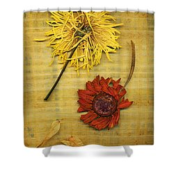 Papyrus 2 Shower Curtain