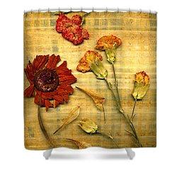 Papyrus1trioa Shower Curtain