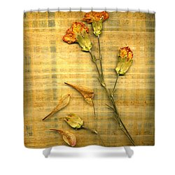 Papyrus2 Shower Curtain