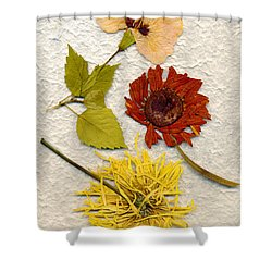 Papyrus3 Shower Curtain