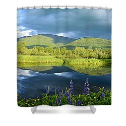 Shower Curtain featuring the photograph Paradise  by Alana Ranney