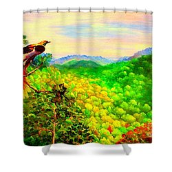 Paradise Bird Of Papua Shower Curtain