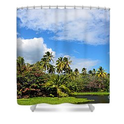 Shower Curtain featuring the photograph Paradise Lagoon by David Lawson