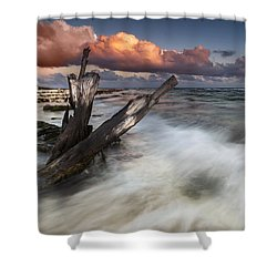 Shower Curtain featuring the photograph Paradise Lost by Mihai Andritoiu