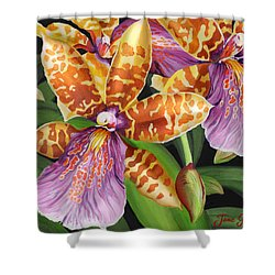 Shower Curtain featuring the painting Paradise Orchid by Jane Girardot