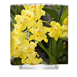 Paradise Orchid  Shower Curtain by Sonali Gangane