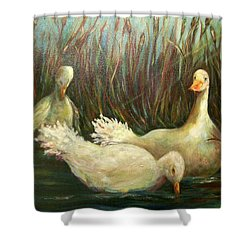 Paradise Pond,ducks  Shower Curtain