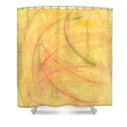 Paranoid In Reverse Shower Curtain by Kelly K H B
