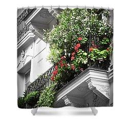 Paris Balcony Shower Curtain by Elena Elisseeva
