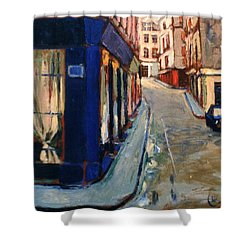Paris Cityscape Shower Curtain