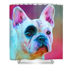 Vibrant French Bull Dog Portrait Shower Curtain by Michelle Wrighton