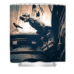 Paris Gargoyles - Gothic Paris Gargoyle With Raven - Sacre Coeur Cathedral - Montmartre Shower Curtain by Kathy Fornal