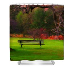 Shower Curtain featuring the painting Park Bench by Bruce Nutting