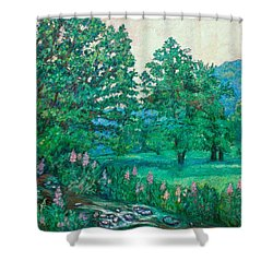 Shower Curtain featuring the painting Park Road In Radford by Kendall Kessler