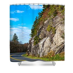 Park Road Shower Curtain by Melinda Fawver