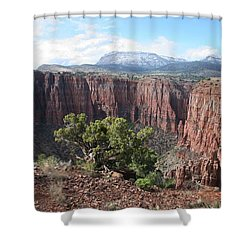 Parker Canyon In The Sierra Ancha Arizona Shower Curtain by Tom Janca