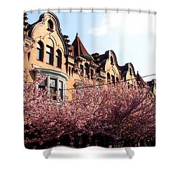 Shower Curtain featuring the photograph Philadelphia Parkside  by Christopher Woods