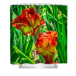 Shower Curtain featuring the photograph Parrot Gladiolus by Rob Sellers