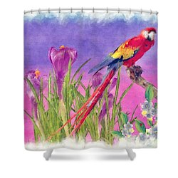 Parrot Shower Curtain by Liane Wright