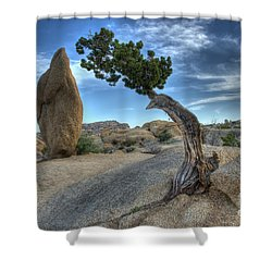Partners Shower Curtain by Bob Christopher