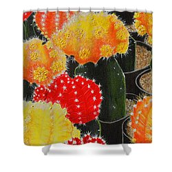 Party Girls Shower Curtain by Donna  Manaraze