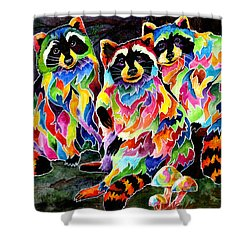 Party Time Raccoons Shower Curtain