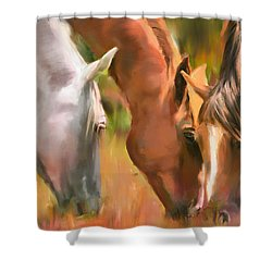 Pascolo Shower Curtain