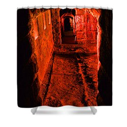 Passage To Hell Shower Curtain by Karol Livote