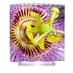 Passiflora The Passion Flower Shower Curtain by Olga Hamilton