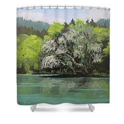 Shower Curtain featuring the painting Passing by Karen Ilari