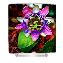 Passion Shower Curtain by Faith Williams