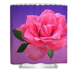 Shower Curtain featuring the photograph Passionate Pink by Joyce Dickens