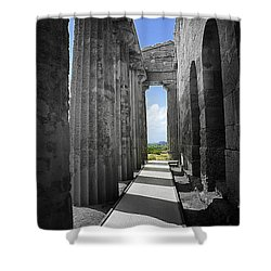Past Present Shower Curtain by Madeline Ellis