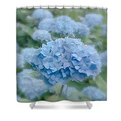 Pastel Blue Hydrangea Shower Curtain by Kim Hojnacki