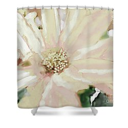 Pastel Daisy Photoart Shower Curtain by Debbie Portwood