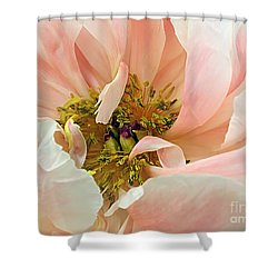 Pastel Floral Shower Curtain by Kaye Menner