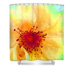 Pastel Garden Shower Curtain by Charlotte Schafer
