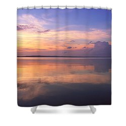 Pastel Majesty Shower Curtain by Rachel Cohen
