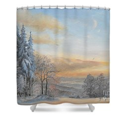 Shower Curtain featuring the painting Pastel by Sorin Apostolescu