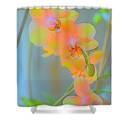 Pastel Orchids Shower Curtain