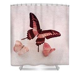 Pastel Pink Butterflies Shower Curtain by Brooke T Ryan