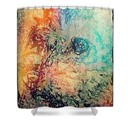 Pastel Pooch Shower Curtain by Lady Ex