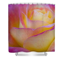 Shower Curtain featuring the photograph Pastels by David Millenheft