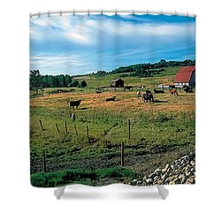 Pasture 2 Shower Curtain by Terry Reynoldson