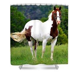 Pasture Shower Curtain