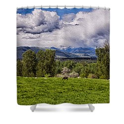 Pastures And Clouds  Shower Curtain by Omaste Witkowski