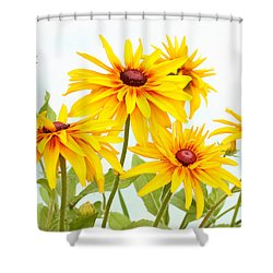 Shower Curtain featuring the photograph Patch Of Black-eyed Susan by Steve Augustin